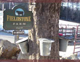 Fieldstone Farm Sign and Buckets