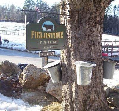 Welcome to Fieldstone Farm!